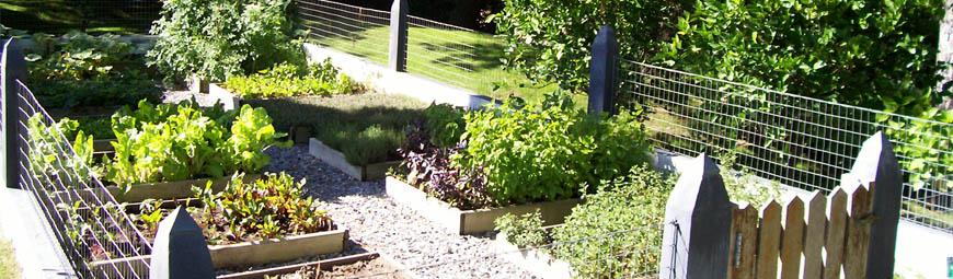 Foresta Paisajes, diseño, construcción y mantenimiento de jardines